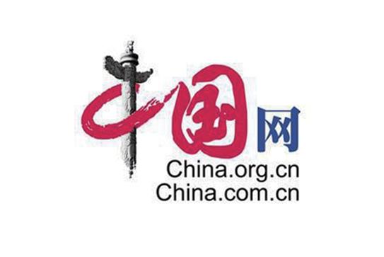 中国网 · 皮书专业化二十年致敬媒体