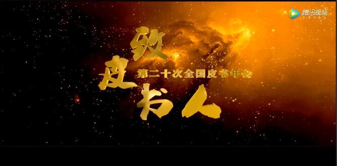 皮书年会20周年宣传片