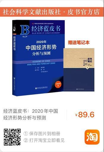 经济蓝皮书111