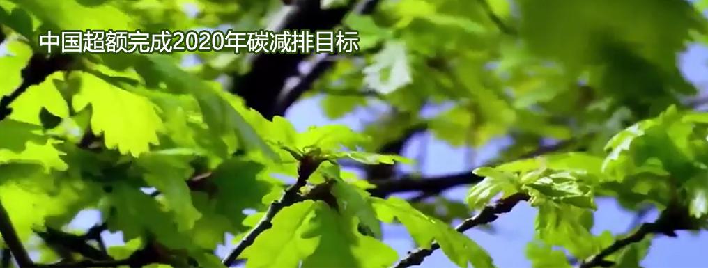 中国超额完成2020年碳减排目标